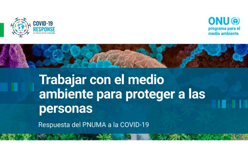 El PNUMA trabaja para reducir los riesgos de pandemias  a través de la protección ambiental